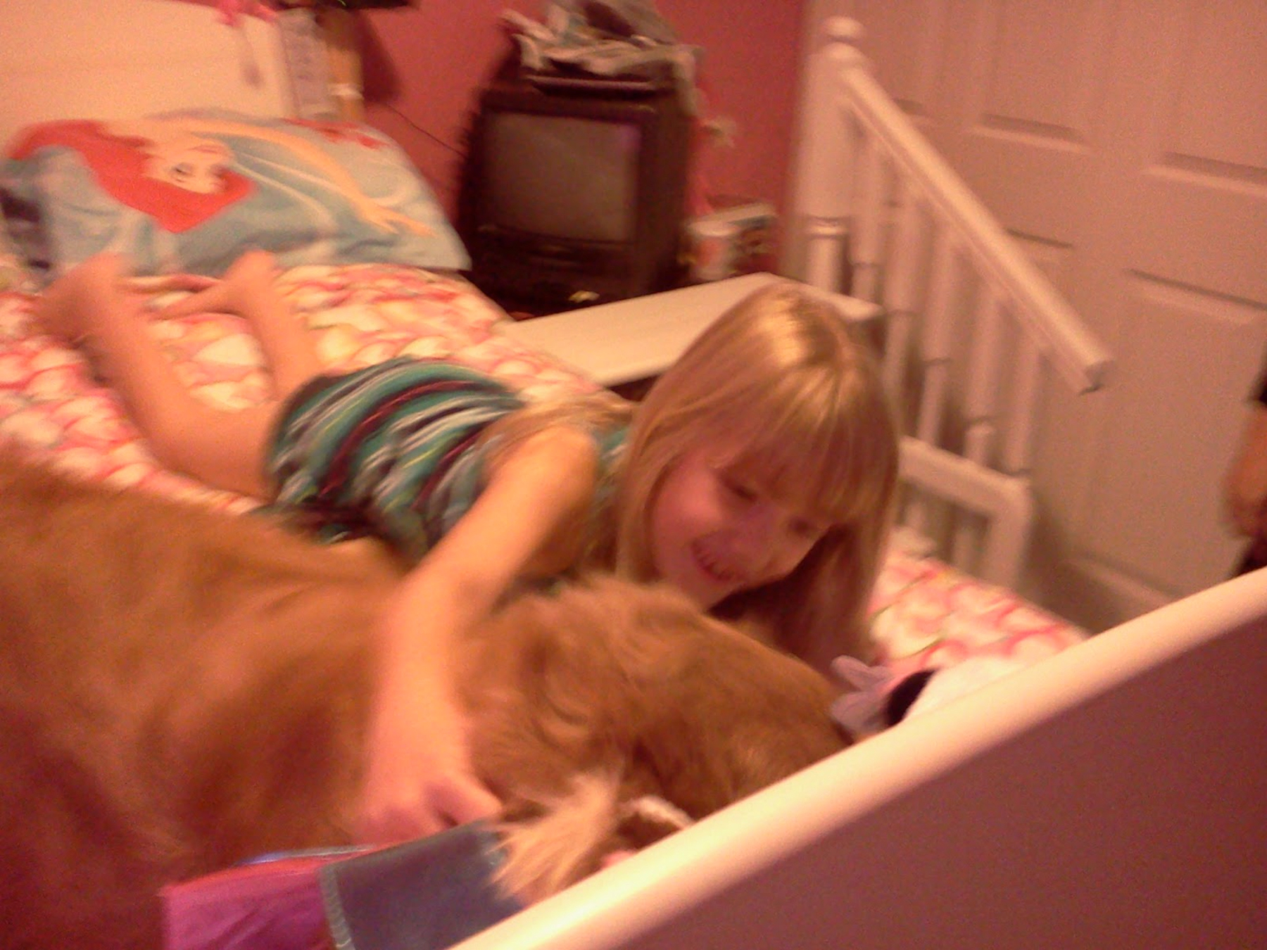 Girl laughing with dog on bed